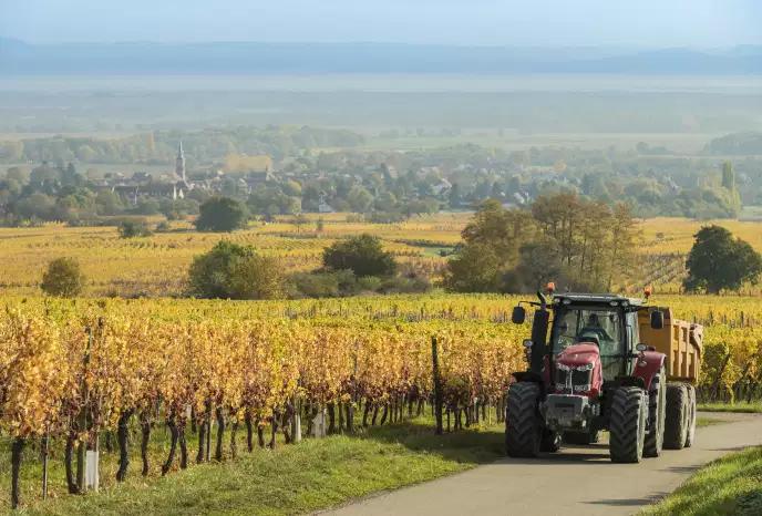 Paysage agricole français