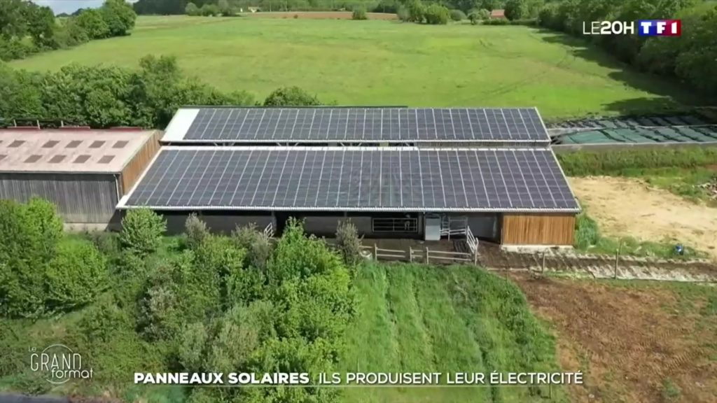 Reportage TF1 énergie photovoltaïque
